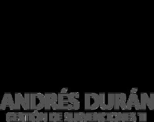 Andrés Durán Consultor Subvenciones